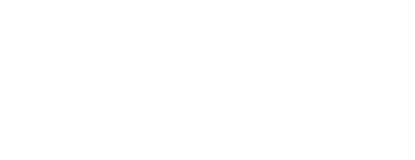 secondary logo The Excellence Group